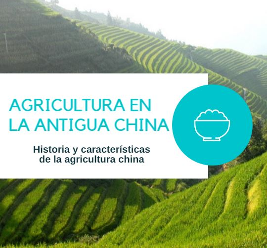 Agricultura china antigua