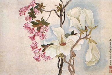 Magnolias, pintura china