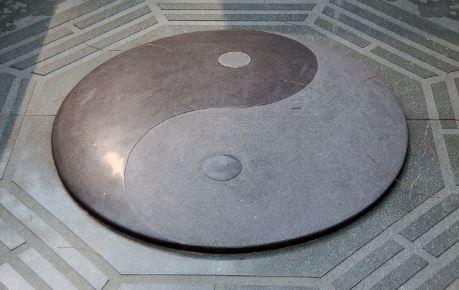 Yin Yang Historia